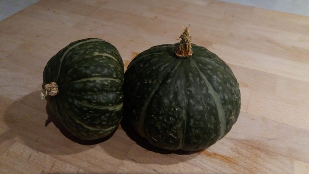 Japanese Chestnut Pumpkin